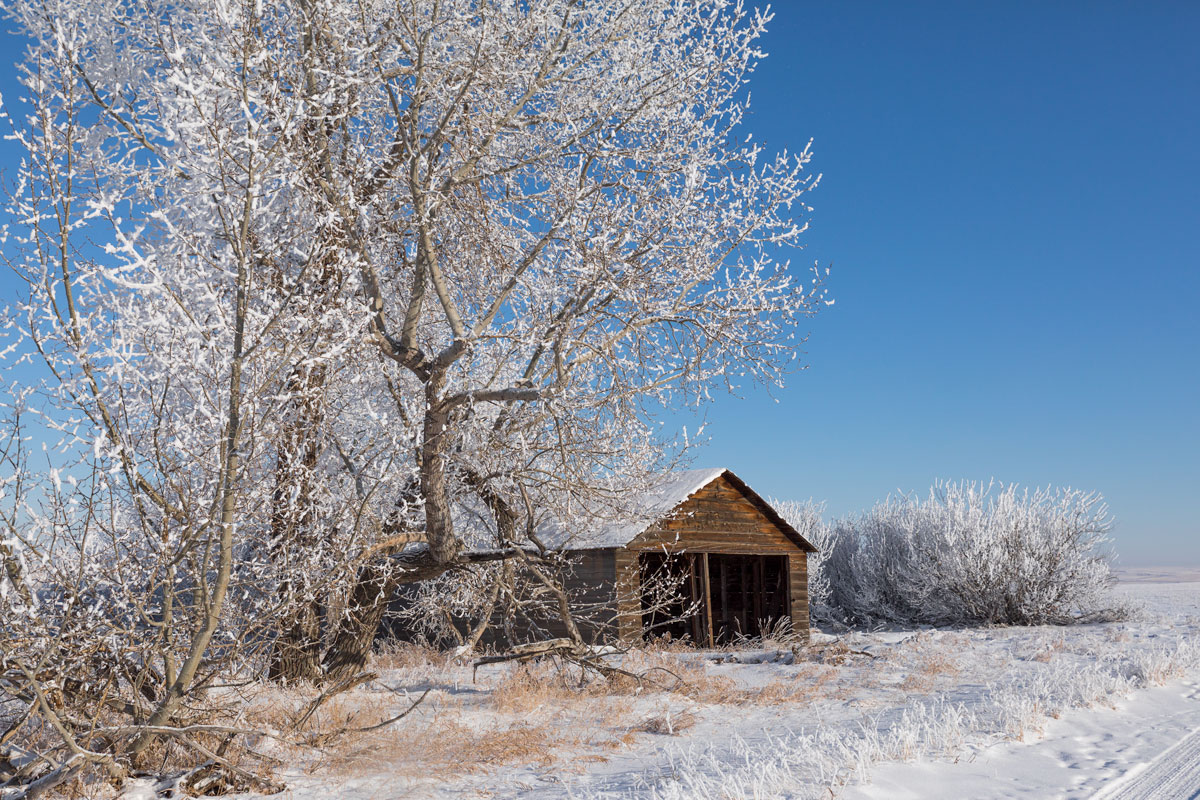 frozen driveway